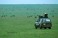 非洲野生動物之旅:Safari in Africa